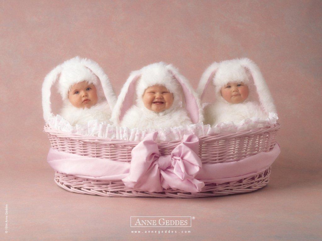 Imagenes de bebes de Anne Geddes, bellisimas.